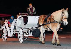 Appalachian carriage rides for the holiday