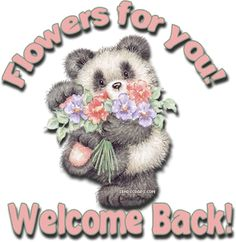 Teddy Bear Welcome For You With Flower Pictures