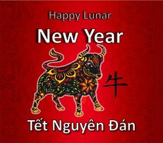 Lunar New Year falls on our February12th in 2021. The language on the bottomno half is Vietnamese