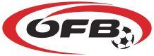 Association Football, Fifa World Cup, Sports Logo, Herren T Shirt, Logos, Lululemon Logo, Soccer, History, Fa Logo