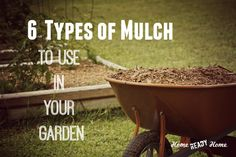 Your garden will benefit from mulch. Here are 6 types of mulch for you to choose from.