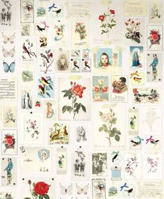 $122.70 Price per wall mural (per m2 $31.54), Romantic wallpaper, Carrier material: Non-woven wallpaper, Surface: Smooth, Look: Matt, Design: Old photos and postcards, Flowers, Vintage pictures, Birds, Basic colour: White, Pattern colour: Yellow, Light blue, Olive green, Red, Characteristics: Good lightfastness, Low flammability, Strippable, Paste the wall, Wash-resistant