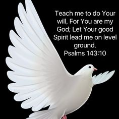 Psalms Teach me to do Your will, For You are my God; Let Your good Spirit lead me on level ground. Bible Verses Quotes Inspirational, Religious Quotes, Spiritual Quotes, Bible Quotes, God Prayer, Prayer Quotes, Faith Prayer, Bible Topics, Bible Mapping