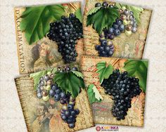 VINTAGE GRAPES STORIES  38x38 inch Digital Collage by KARTINKAshop, $4.50