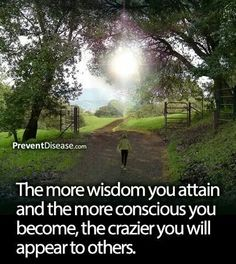 Yes those of us that have found our way home within ourselves and have accessed the divine wisdom from within are considered to be crazy by those that have no understanding of themselves. <3 -Mary Long-