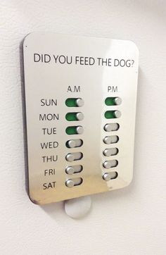 This is a shizzlin' idea! Did You Feed The Dog? Solution www. - Pet Friendly Home - This is a shizzlin' idea! Did You Feed The Dog? Solution www. Animal Room, Dog Rooms, Ideas Geniales, Dog Houses, Dog Care, Tricks, Fur Babies, Diy Projects, House Design