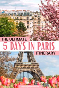 Amazing Things To See and Do In Paris in 5 Days