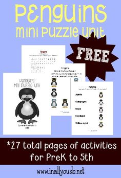 body parts penguin research for the kids pinterest body parts penguins and penguin research. Black Bedroom Furniture Sets. Home Design Ideas