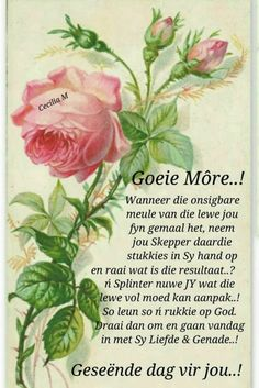Good Morning Wishes, Good Morning Quotes, Lekker Dag, Evening Greetings, Goeie Nag, Goeie More, Afrikaans Quotes, Bible Verses, Poems