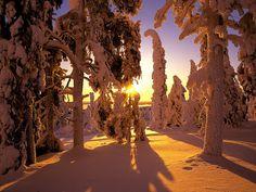 Mooie Sneeuw Achtergronden | Bureaublad Achtergronden