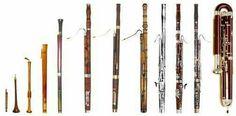 Bassoon evolution
