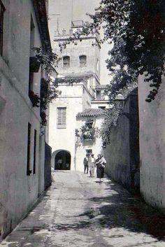 Sin duda, una de las estampas más fotografiadas de Sevilla: la calle judería