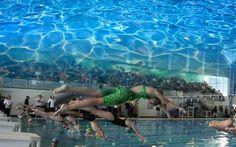 Agonswim wedstrijdzwemkleding nieuwe prints en kleuren