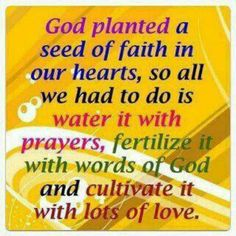 Planting the seed of faith | Inspirational quotes | Pinterest ...