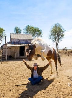 So this is to trust your horse!   In the pic: Luke Thomas and his mare Twisty McWonderful