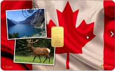 Karatbars Canada Gold Card 1Gram  24kt Gold Bullion In Small Gram Weights From Karatbars International. Save In Gold! Get yours today.   Learn more@ +34644779968 - Instant Global Response(Mobile/Whatsapp)  http://karatleverage.com/karatbars-gold-money-introduction/  #karatbars #goldbullion #canada #karatleverage