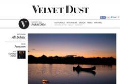 Velvet Dust interview with installation artist Ali Beletic Artistic Installation, Ali, Interview, Velvet, Ant