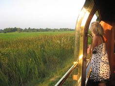 The view from the Orient Express in Thailand, from Bangkok to Chiang Mai.
