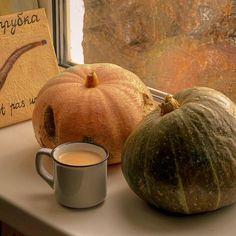 We Fall In Love, Fall Winter, Fall Boards, Autumn Aesthetic, Red Aesthetic, Autumn Cozy, Spooky Scary, Best Seasons, Fall Season