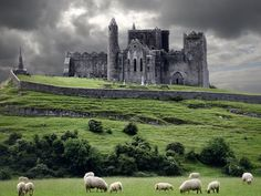 The Rock of Cashe -  also known as Cashel of the Kings and St. Patrick's Rock, is a historic site in Ireland's province of Munster, located at Cashel, South Tipperary. I LOVE LOVE LOVE this Picture