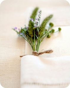 fresh herbs on napkin. MUST HAVE