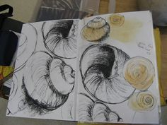 sketch book - shells on Bude beach I would encourage the students look for shell, and to sketch them in place. Not picking them up, just sketch them as they rest on the sand.even if the water tickles your feet. Sketchbook Layout, Gcse Art Sketchbook, Sketchbook Inspiration, Sketchbook Ideas, Shell Drawing, Beach Drawing, Natural Form Art, Observational Drawing, Creta