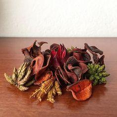 Still-life ikebana. #ikebana #driedflowers #colors #saturday #morning #stilllife #shotoniphone #igersitalia #igersemiliaromagna #igersbologna
