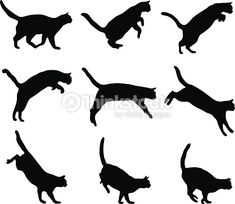 Vector Art : Cat jumping