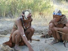 If Pigs Could Fly: The Bushmen of the Kalahari