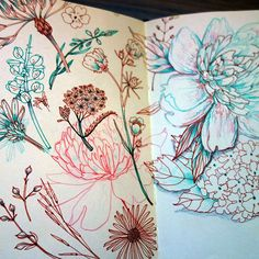 Draw a bunch of different items that are similar in different but similar pens! illustration blume, a level art sketchbook, sketchbook ideas Plant Drawing, Painting & Drawing, Drawing Flowers, Painting Flowers, Colour Drawing, Doodle Flowers, Flower Drawings, Art Floral, Art Inspo
