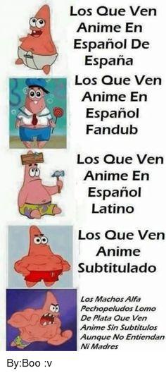 Ideas For Humor En Espanol Memes New Memes, Funny Memes, Hilarious, Memes Humor, Funny Koala, Koala Meme, Funny Animals, Memes Marvel, Memes In Real Life
