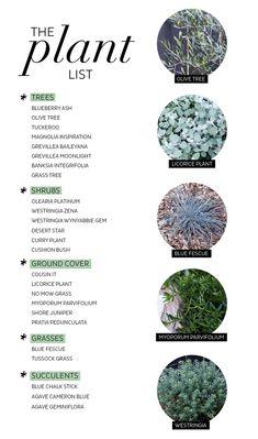 My Backyard Makeover — Adore Home Magazine Australian Garden Design, Australian Native Garden, Landscaping Supplies, Backyard Landscaping, Garden Edging, Garden Beds, Back Gardens, Outdoor Gardens, Modern Gardens