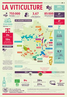Agriculture, food and forestry in infographics. Guide Vin, Wine Guide, French Learning Books, Wine Infographic, Wine Terms, Types Of Red Wine, Mets Vins, Wine Chart, Beer Tasting