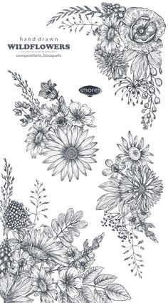 Vector insects and wildflowes set Tatoo Art, Body Art Tattoos, New Tattoos, Sleeve Tattoos, Tatoos, Tattoo Sketches, Tattoo Drawings, Art Drawings, Wildflower Tattoo