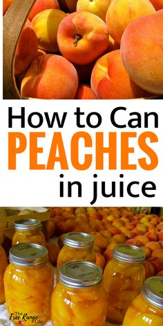 Canned Peaches Food preservation- Canning Recipes- How to Can Peaches in juice- with no added sugar!Food preservation- Canning Recipes- How to Can Peaches in juice- with no added sugar! Home Canning Recipes, Canning Tips, Jam Recipes, Can Peaches Recipes, Cooker Recipes, Canning Peach Recipes, Pressure Canning Recipes, Peach Jelly Recipe Canning, Vegan Recipes