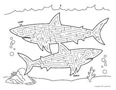 Ocean Theme: Ocean Animals and More Summer Packet plus