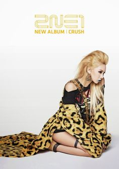 "2NE1 - NEW ALBUM ""CRUSH"" by. YG ENTERTAINMENT"