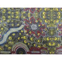 Beautiful printed cotton fabrics designed by Australian Aboriginal and Torres Strait Islander Designers. Aboriginal Art, Artwork Prints, Printed Cotton, Fabric Design, Printing On Fabric, City Photo, Cotton Fabric, Knowledge, Print Fabrics