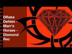 DRake Dehlen - Marr's Horses - Diamond Rec