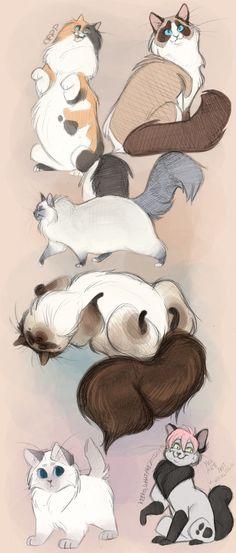 wonderful drawings of cats