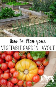 Want the Healthiest Vegetables? Use These Tips for your Garden Plans: