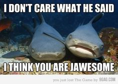 You're jawesome