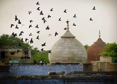 The Lesser Known Agra with a Greeter | Padhaaro