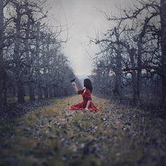 """The Orchard of Dark Hollow"" — Photographer: Nicole Burton - Parvana Photography Model: Emily Berlant Fantasy Magic, Dark Fantasy, Beauty In The Struggle, Fairy Photoshoot, Dark Fairytale, Snow White Disney, Dark Beauty Magazine, Surrealism Photography, Surreal Art"