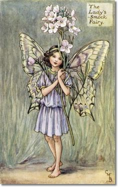Cicely Mary Barker - Flower Fairies of the Spring - The Ladys Smock Fairy Archival Fine Art Paper Print