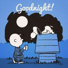 Good night! - Charlie Brown and Snoopy