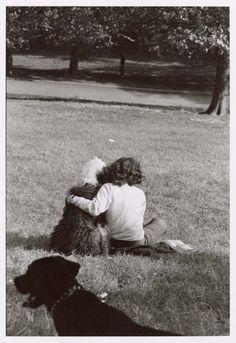 Elliott Erwitt Dogs | Elliott Erwitt, New York , 1972