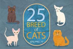25 breeds of cats, vector @creativework247