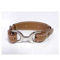 Cool Hermes dog collar.