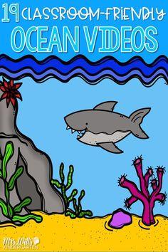 Ocean videos for your kindergarten or first grade classroom. Explore the life of ocean animals with these fun teacher-approved videos. Ocean Lesson Plans, Ocean Zones, Ocean Habitat, Ocean Projects, Ocean Video, Ocean Unit, Kindergarten Activities, Preschool Ocean Activities, Ocean Themes